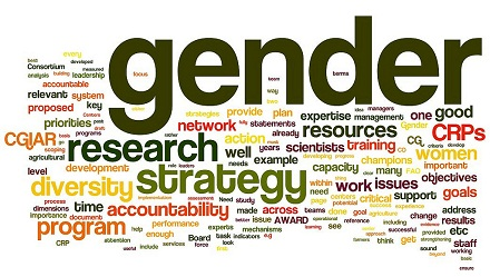 ILRI, Gender 'tag cloud', CC BY-NC-SA 2.0, www.flickr.com